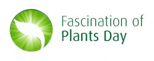 Logotype Facination of Plant Days