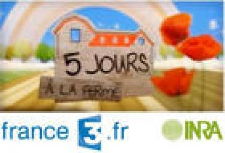 Cinq jours à la ferme - Magazine France 3, en partenariat avec l'Inra
