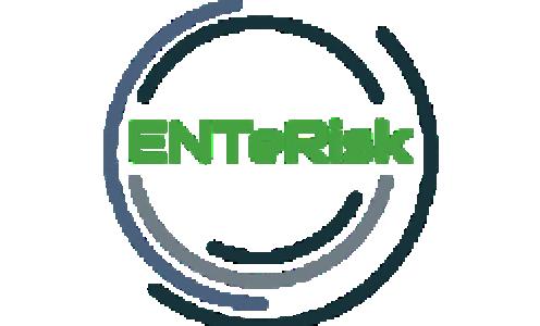 E11-ENTeRisk : Endocrinologie & Toxicologie de la Barrière Intestinale