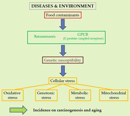 Disease & Environment
