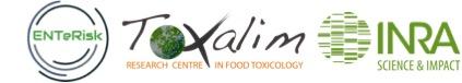 logo email_v2