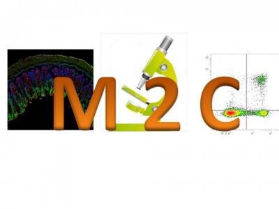 E22 M2C