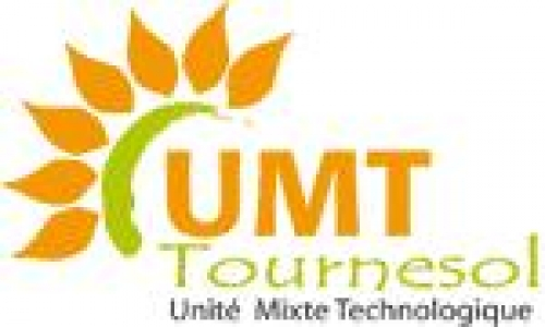 Logo UMT Tournesol