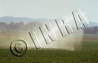 irrigatio_mais