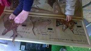 puzzle_BL_museum_04_06_17