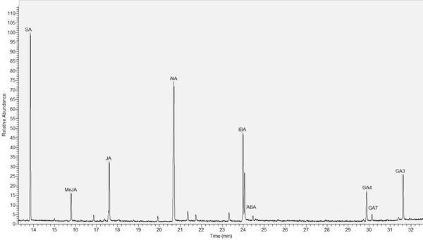 Chromato phytohormones GC-MS